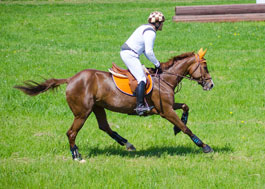 concours cheval complet